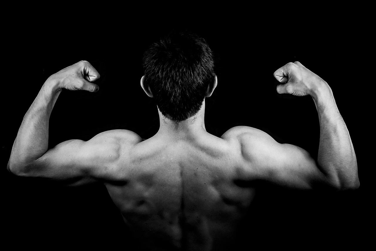 Testosteron a jak zvýšit jeho hladinu
